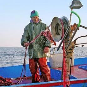 Fermo Pesca anno 2018: nuove informazioni per compilare le richieste