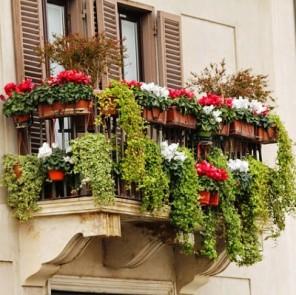 Bonus verde per giardini, balconi e terrazzi: come funziona ...