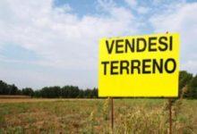 Ai fini della determinazione della plusvalenza a seguito di vendita di terreni con intento speculativo, va considerato anche il costo sostenuto per l'acquisto dei terreni limitrofi, anche se trasferiti poi a titolo gratuito, se tale costo si inquadra nella medesima globale operazione economica